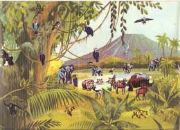 Décorama Touret Animaux D´Afrique 1974 Décalcomanies Eléphant Girafe Zèbre Antilope Hippopotame Singe Hyène - Vieux Papiers