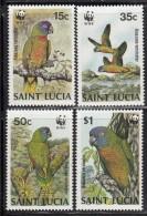 St. Lucia MNH Scott #902-#905 Set Of 4 Amazonian Parrots - World Wildlife Fund - St.Lucie (1979-...)