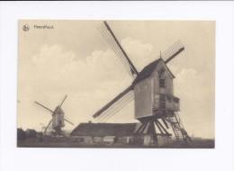 Herenthout  Windmolen - Herenthout