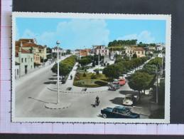 JARDIM CONDE DE SUCENA - AVEIRO - 2 Scans (Nº07705) - Aveiro