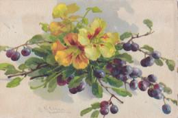 Bouquet De Fleurs Signé C. KLEIN - Ilustradores & Fotógrafos