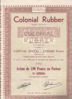 Colonial Rubber - Gent - Afrique