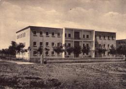 BELLARIA  IGEA  MARINA  ,  Colonia  Italia - Rimini