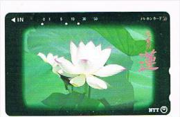 GIAPPONE  (JAPAN) - NTT (TAMURA)  -  CODE 391-054 FLOWERS 1992     - USED - RIF. 8431 - Japan