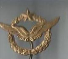 Insigne/ Epinglette/Aviation /Brevet de pilote //Laiton embouti//Vers 1945-1955    D519