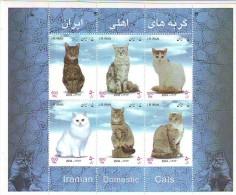 IRAN 1 SHEET OF CAT MNH VERY NICE - Chats Domestiques