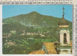 Cuneo Viola  Pittoresca  Vg - Cuneo