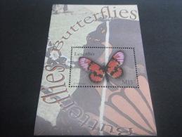 Lesotho-Butterflies - Schmetterlinge