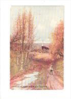 Romantic Spot Near St. Columb Hildesheimer Art Postcard CORNWALL UNUSED - Angleterre