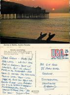 Malibu Pier Surfers, California, United States US Postcard Posted 1979 Stamp - Los Angeles