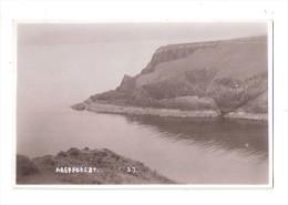 RP Aber Forest  AberForest No.37 Nr Cwm Yr Eglwys  Cym Yr Eglys Nr NEWPORT Fishguard PEMBROKESHIRE WALES - Pembrokeshire