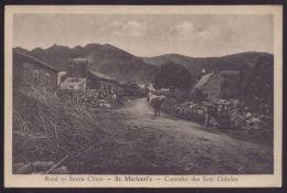 S. MIGUEL / AÇORES / PORTUGAL Postal Caminho Psra As Sete Cidades. Old Postcard Road To Seven Cities - Açores