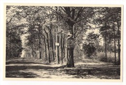 Kasterlee - Goorseweg - Kasterlee