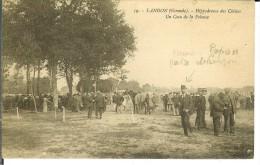 CPA LANGON Hippodrome Des Chênes 10404 - Langon