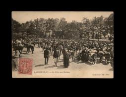 29 - LANDERNEAU - Foire Aux Bestiaux - Landerneau