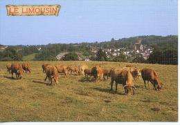 Le Limousin Des Prés Des Vaches Des Villages Cachés Dans La Verdure C'est.... N°436 Bos Toilée - Sonstige Gemeinden