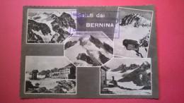 Saluti Dal  Bernina (Sondrio) - Sondrio
