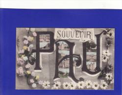 Y866)   PAU  Souvenir ( Très Très Bon état   ) - Pau