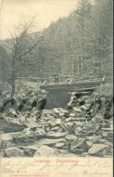 Litho Isergebirge Stolpichstrasse Holzbrücke Person Um 1900 Karl Gebauer Friedland - Boehmen Und Maehren