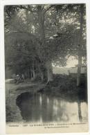 LA ROCHE SUR YON. - Sous-Bois à La Brossardière De Saint-André-d'Ornay - La Roche Sur Yon