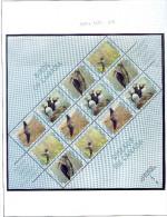 Canada **  N°  1450 à 1453 - Oiseaux Canadiens, Crécelles, Macareux, Grand Pic, Colibri -feuille De 3 Bdes - Nuovi