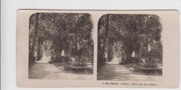 Stereofoto - Der Rhein Coblenz - Partie Aus Den Anlagen 1903 - Stereo-Photographie