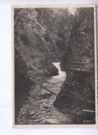 Vintgar Unused Postcard (cb2064) - Slovenië