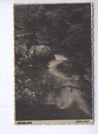 Bled Vintgar  Used Postcard (cb2079) - Slovenië