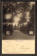 Pays-Bas - Tilburg - Wilhelminapark - Tilburg