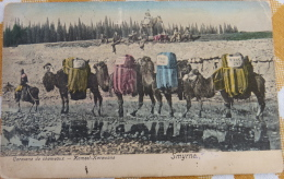 Turkey, Smyrna, Izmir, Caravane De Chameaux, Camels - Turchia