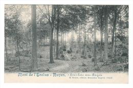 (J507) - Mont-De-L´Enclus - Ruyen - 4 Sous-bois Vers Ruyen / E. Desaix, éditeur, Bruxelles - Mont-de-l'Enclus