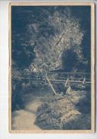 Vintgar Used Postcard (cb2344) - Slovenië
