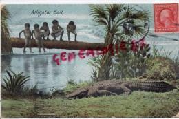 ETATS UNIS -  CUBA -  JAMAIQUE- FLORIDE- ALLIGATOR BAIT  ENFANT - CROCODILE - Etats-Unis