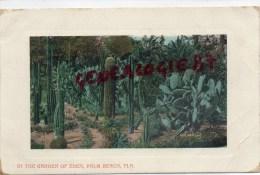 ETATS UNIS -    FLORIDE- IN THE GARDEN OF EDEN  PALM BEACH - Etats-Unis