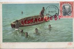 BAHAMAS - NASSAU - DIVING FOR COINS AT NASSAU - BAHAMA ISLANDS - Cartes Postales
