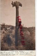 ETATS UNIS - ARIZONA - A GIANT CACTUS   GRAND CANYON 1906 - Non Classés