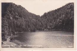 AK Eibensee Bei Fuschl Am See Salzkammergut (6041) - Österreich