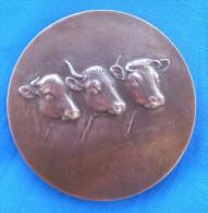 Medaille Bronze J H GOEFFIN (motif Vache) Offert Par Député De Tarn Et Garonne - Autres