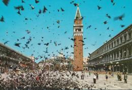 VENEZIA PLACE ST MARC VOLEE DE PIGEONS - Venezia