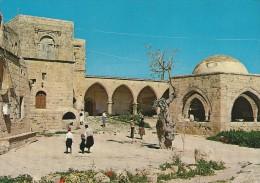 Ayla Napa Monastery  Cyprus     # 03395 - Cyprus