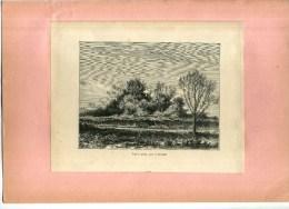 - FRANCE . FIGUIER GEANT PRES DE ROSCOFF . GRAVURE SUR BOIS  DU XIXe S . DECOUPEE ET COLLEE SUR PAPIER . - F. Trees & Shrub