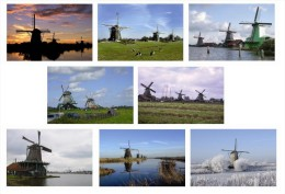 Windmills Postcard Collection (50 Differents) - Size:15x10 Cm. Aprox. - Molinos De Viento