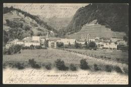 MONTREUX Les Planches Territet 1903 - VD Vaud