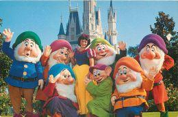 SNow White And Seven Dwarfs, Disneyworld, Orlando, Florida, USA Postcard - Disneyworld