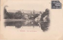 SISTERON PONT DE GOURGNIAS  N° 6 - Sisteron