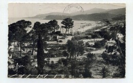 CP , 83 , LE LAVANDOU , La Favière - Le Lavandou
