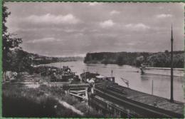 78 CONFLANS-SAINTE-HONORINE - Les Bords De La Seine - Conflans Saint Honorine