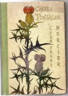 51 - EPERNAY - RARE CLASSEUR CARTES POSTALES CHAMPAGNE MERCIER - 1900- ART NOUVEAU