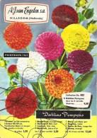 CATALOGUE DE FLEURS DE HOLLANDE ...A.J. VAN ENGELEN S.A..HILLEGOM...Printemps 1967...47 Pages  Toutes Sorte De Variétés - B. Plantes Fleuries & Fleurs