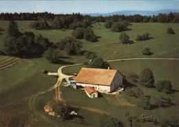 Ferme Des Franches Montagnes - Montgremay - JU Jura
